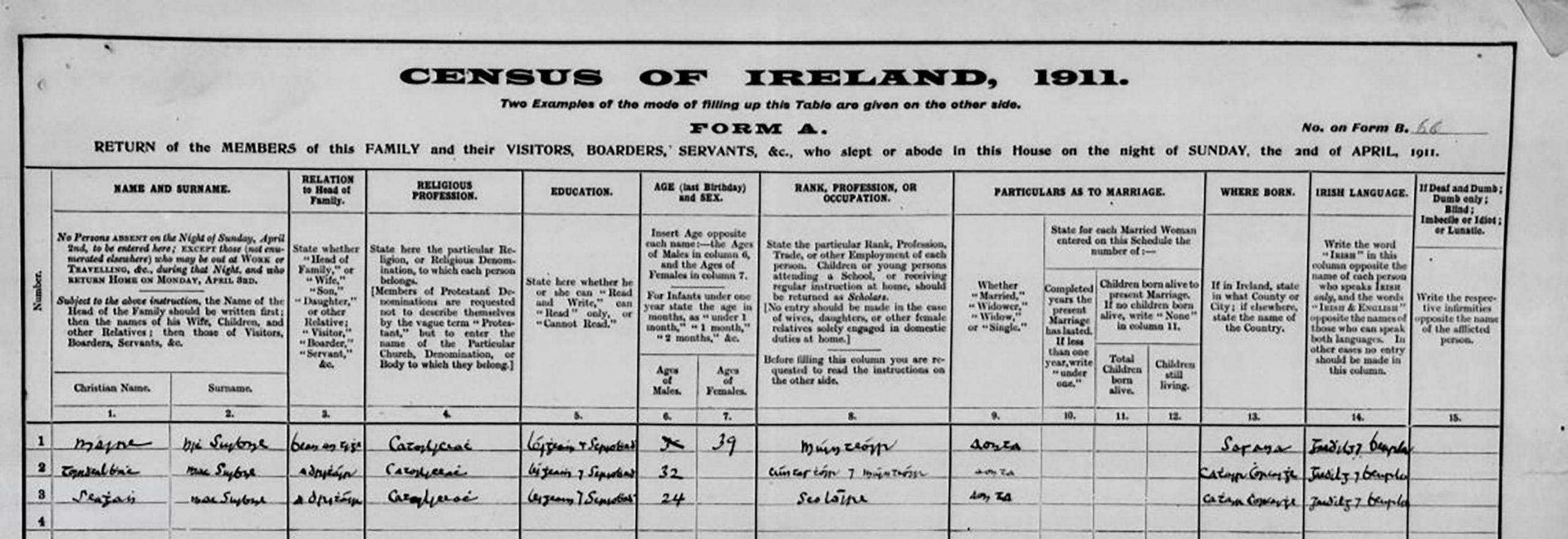Mary MacSwiney 1911 Census Return