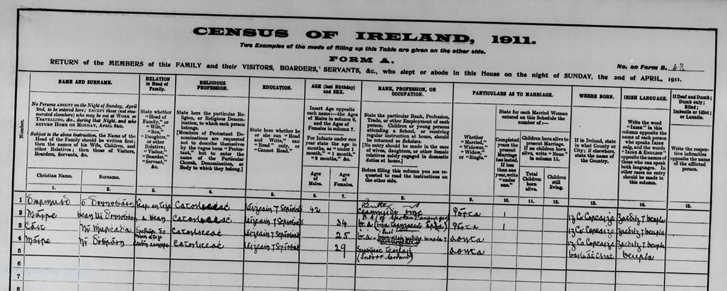 Kate Murphy 1911 Census Return